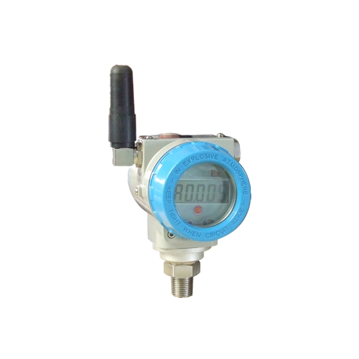 Explosion-proof digital pressure transmitter, sensor SM39P